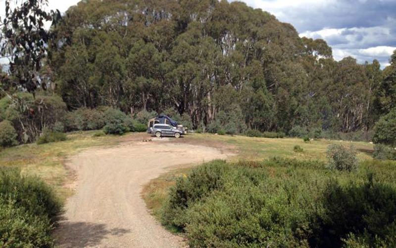 Craig's Hut Camping Area