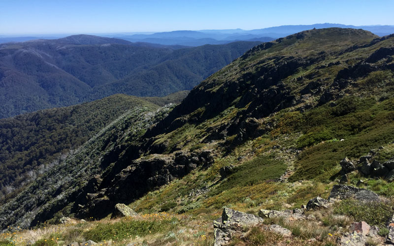 buller huts trail notes