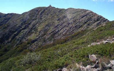 Mount Buller Summit